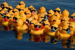 Start wekelijkse zwembadactiviteiten