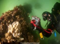 Onderwaterfotograaf - door Cor Kuyvenhoven